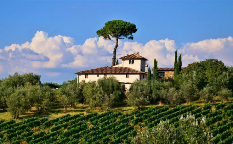 Tuscany vineyard wine region
