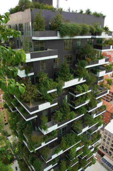 Vertical forest building in Milan
